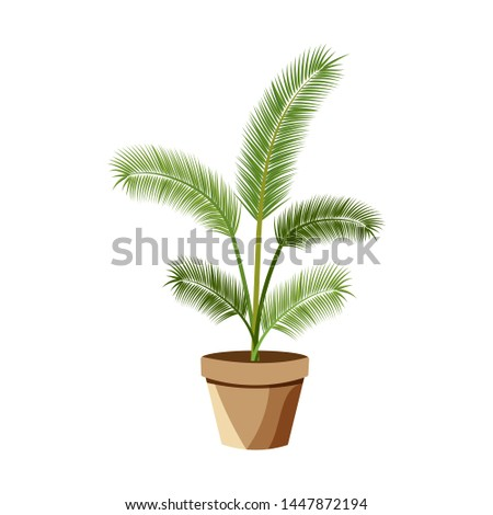 Vector detailed house plant for interior design and decoration.Tropical plant for interior decor of home or office. #1447872194