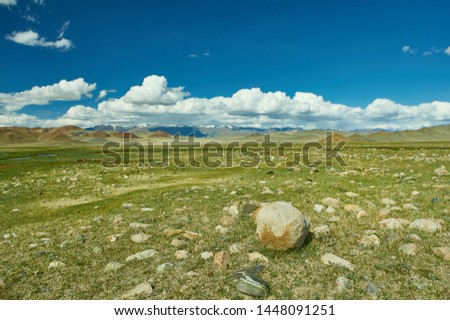 Mongolian Altai.  Scenic valley on the background of the snowcapped mountains. #1448091251