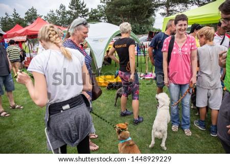 Brno / Czech Republic - June 22 2019: Moravian dog show #1448929229