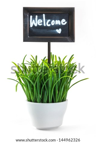 Welcome sign and green color grass in white ceramic pot