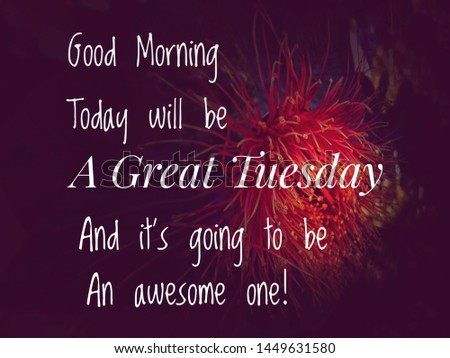 Image with wordings or quotes about tuesday