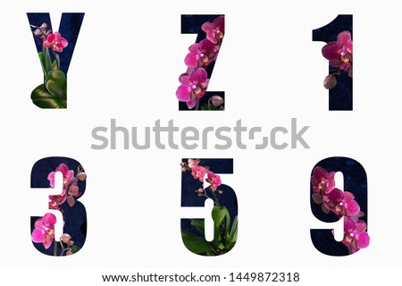 Flower font Alphabet y,z and1,3,5,9 made of Real alive flowers with Precious paper cut shape of letter. Collection of brilliant flora font for your unique decoration in spring #1449872318