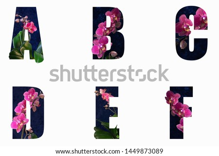 Flower font Alphabet a, b, c, d, e, f made of Real alive flowers with Precious paper cut shape of letter. Collection of brilliant flora font for your unique decoration in spring,  #1449873089
