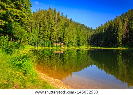 view of a mountain lake near the pine forest early in the morning #145052530