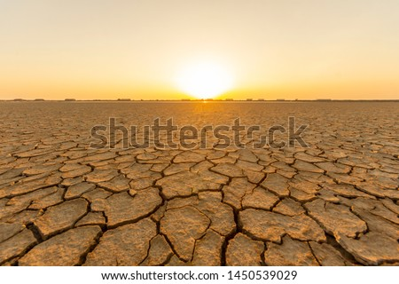 The land that is barren and cracked from the hot sun in the summer, with the bright light of the sun as the background Royalty-Free Stock Photo #1450539029