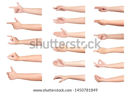 Set of woman hand isolated on white background. #1450781849