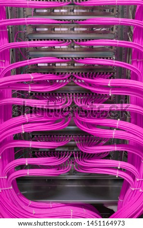 Network switch and network cable in a data center #1451164973