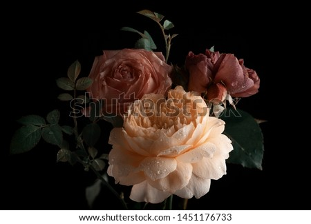 Beautiful bunch of colorful roses flowers on black background. Festive flowers concept. Floral vintage card with flowers. #1451176733