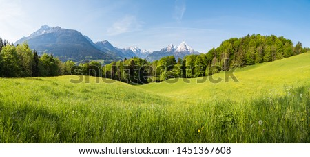 Scenic panoramic view of idyllic rolling hills landscape with blooming meadows and snowcapped alpine mountain peaks in the background on a beautiful sunny day with blue sky and clouds in springtime #1451367608