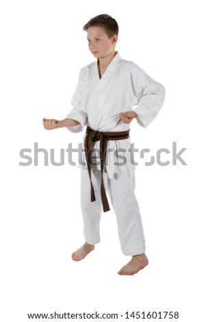 Teenage caucasian boy wearing a karate uniform doing a short punch #1451601758