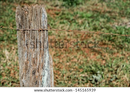 Wooden fence with barbed wire 2 #145165939