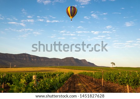 Hot Air Balloon drifting past a vineyard in the Hunter Valley Royalty-Free Stock Photo #1451827628