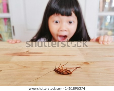 The cute little girl looking and afraid of cockroaches, Because the cockroaches are dirty and disgusting, focus on cockroaches, blur background, filter