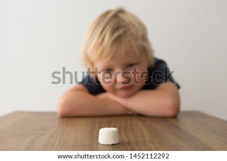 Cute child looks at single marshmallow on table. The marshmallow test/marshmallow experiment.  #1452112292
