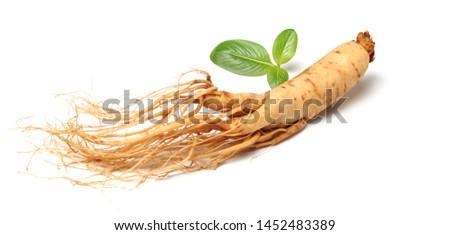 Chinese herbal medicine - ginseng #1452483389