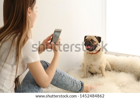 Beautiful young woman taking photo of cute pug dog at home