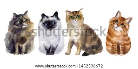 Watercolor cats sketch. Postcard funny #1452596672