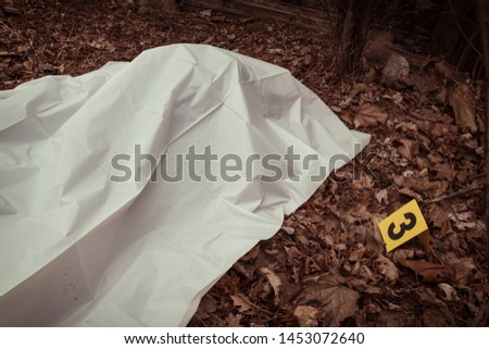 Victim of a violent crime under a sheet in a rural yard. With evidence markers. Royalty-Free Stock Photo #1453072640