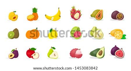 Tropical fruits vector illustrations set. Sliced pineapple, banana, kiwi, pear, apricot, plum, kernel,citrus, apple, pomelo, guava, kumquat, dragon fruit, papaya, passion fruit, lychee, avocado, fig #1453083842