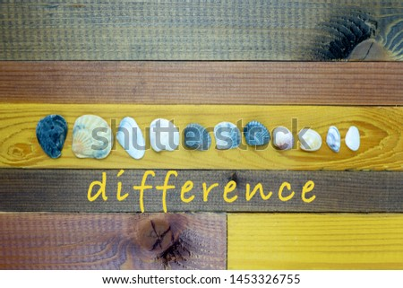 """Seashells of various sizes and shapes in center - concept of the union of differences - on the wooden table treated with different colors of stain. The inscription """"difference"""" below positioned horizo #1453326755"""