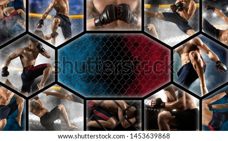 MMA collage.  Mixed martial arts fighter (MMA)  Royalty-Free Stock Photo #1453639868