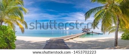 Tropical beach, Maldives. Jetty pathway into tranquil paradise island. Palm trees, white sand and blue sea, perfect summer vacation landscape or holiday banner. Beautiful tourism destination, Maldives #1453702223