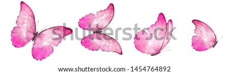 Four watercolor butterflies, isolated on white background #1454764892