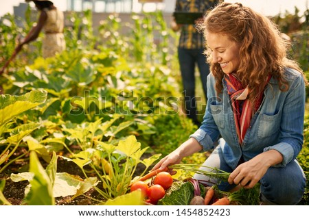 Friendly team harvesting fresh vegetables from the rooftop greenhouse garden and planning harvest season on a digital tablet #1454852423
