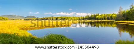 Early Autumn in Bass Harbor Marsh, Acadia National Park, Maine. #145504498