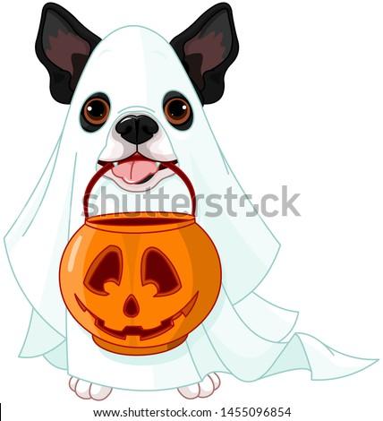 Halloween costumed dog holds pumpkin bag