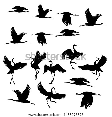 Silhouette or shadow black ink icons of crane birds or herons flying and standing set. Group of storks outline template or creative background vector illustration isolated on white. Royalty-Free Stock Photo #1455293873