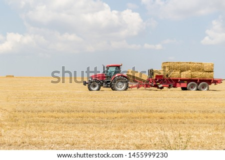 Tractor collecting straw bales during harvesting in the field at nice blue sunny day. Straw collection after wheat harvests. Loading bales of straw on trailer. #1455999230