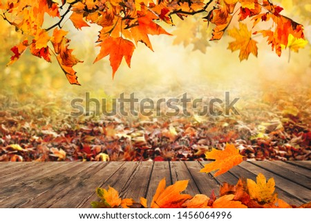 Wooden table with orange leaves autumn background #1456064996