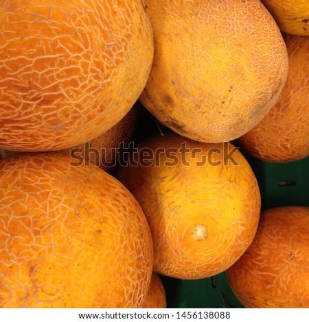 Macro Photo food fruit asian galia melon. Texture background food colorful fruit yellow  galia melons. Image of food product fruit yellow  galia melon #1456138088