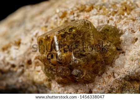 Macro stone Grossular mineral on a black background close up #1456338047