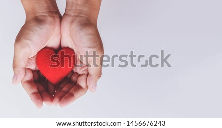 heart on hand for philanthropy concept / woman holding red heart in hands for valentines day or donate help give love warmth take care , World Health Day #1456676243
