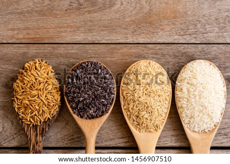 Variety type and color of rice ; paddy rice, riceberry ,brown coarse rice and white thai jasmine rice in wooden spoon  isolated on old rustic wood table background. Healthy food concept. Flat lay. #1456907510