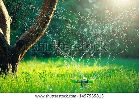 Garden, Grass Watering. Smart garden activated with full automatic sprinkler irrigation system working in a green park, watering lawn, flowers and trees. sprinkler head watering. Gardening concept  #1457535815