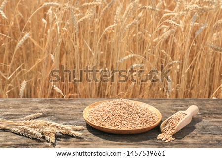Plate and scoop with wheat grains on wooden table in field #1457539661
