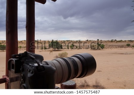 Urikaruus, Kgalagadi Transfrontier Park/South Africa 01/29/2019 balcony and view from the honeymoon chalet #1457575487
