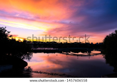 Colorful summer sunset in the park #1457606558