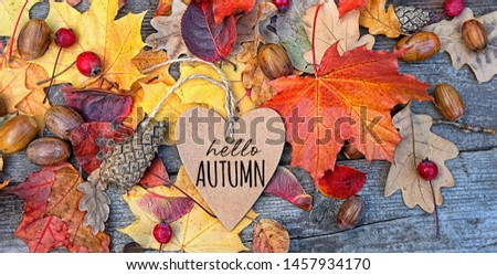 hello autumn. Autumn Background with heart greeting card and leaves on wooden board. fall season backdrop #1457934170