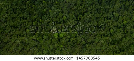Aerial view road going through forest, Road through the green forest, Aerial top view car in forest, Texture of forest view from above, Ecosystem and healthy environment concepts and background. #1457988545