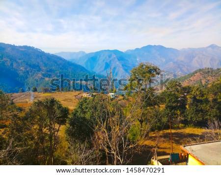 Terrace Farming in Bageshwar Hill, Uttarakhand Hill, Uttarakhand #1458470291