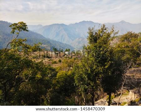 Terrace Farming in Bageshwar Hill, Uttarakhand Hill, Uttarakhand #1458470309
