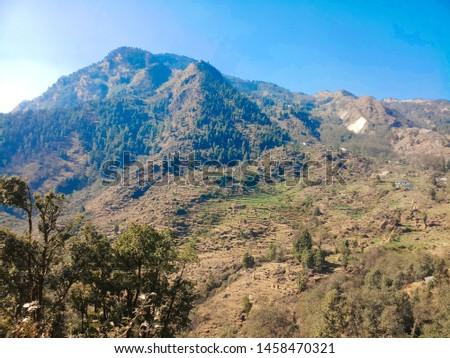 Terrace Farming in Bageshwar Hill, Uttarakhand Hill, Uttarakhand #1458470321