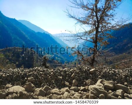 Terrace Farming in Bageshwar Hill, Uttarakhand Hill, Uttarakhand #1458470339