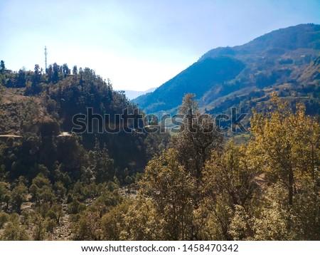 Terrace Farming in Bageshwar Hill, Uttarakhand Hill, Uttarakhand #1458470342