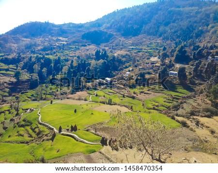Terrace Farming in Bageshwar Hill, Uttarakhand Hill, Uttarakhand #1458470354