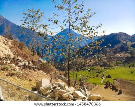 Terrace Farming in Bageshwar Hill, Uttarakhand Hill, Uttarakhand #1458470366